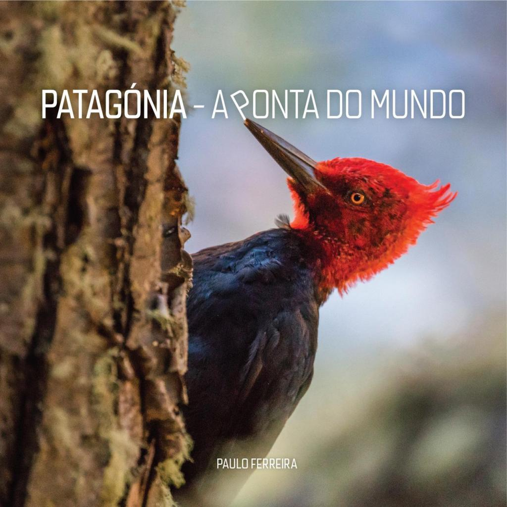 Patagónia - A Ponta do Mundo