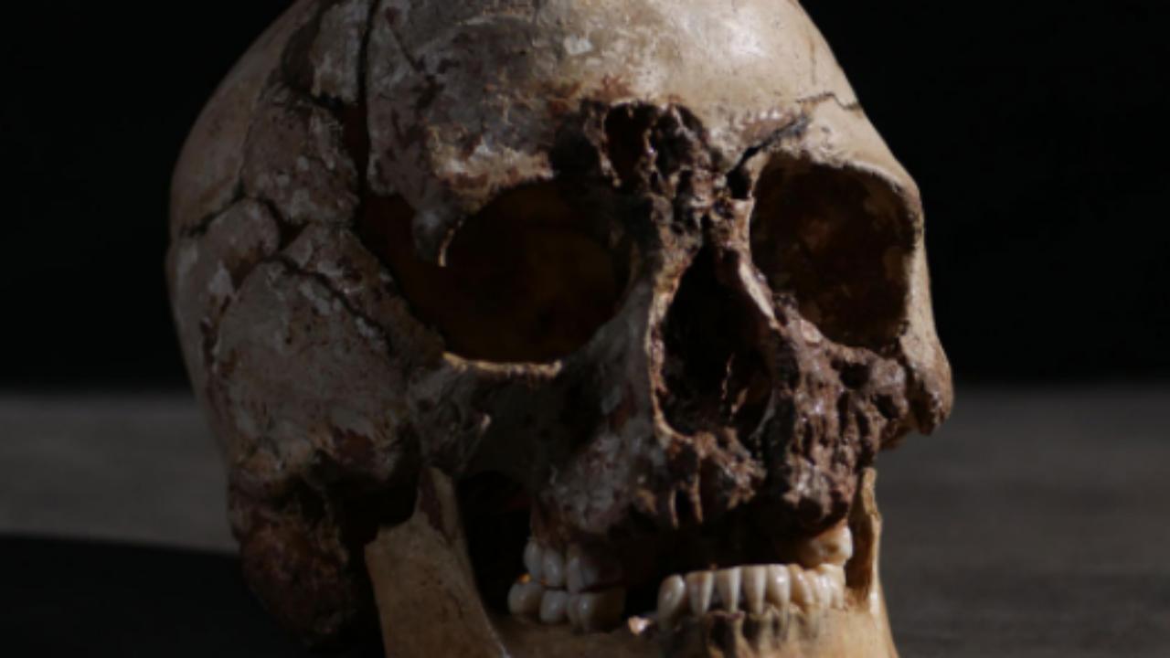 DNA revela que primeiros humanos da Inglaterra eram negros de olhos claros