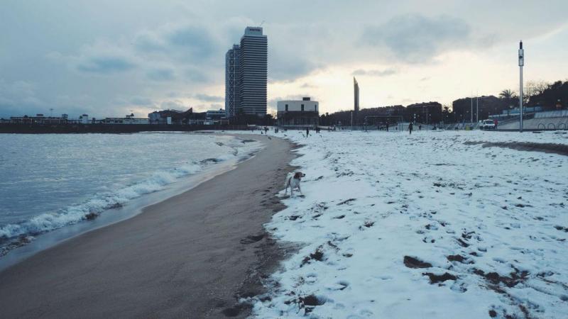 Neve em Barcelona