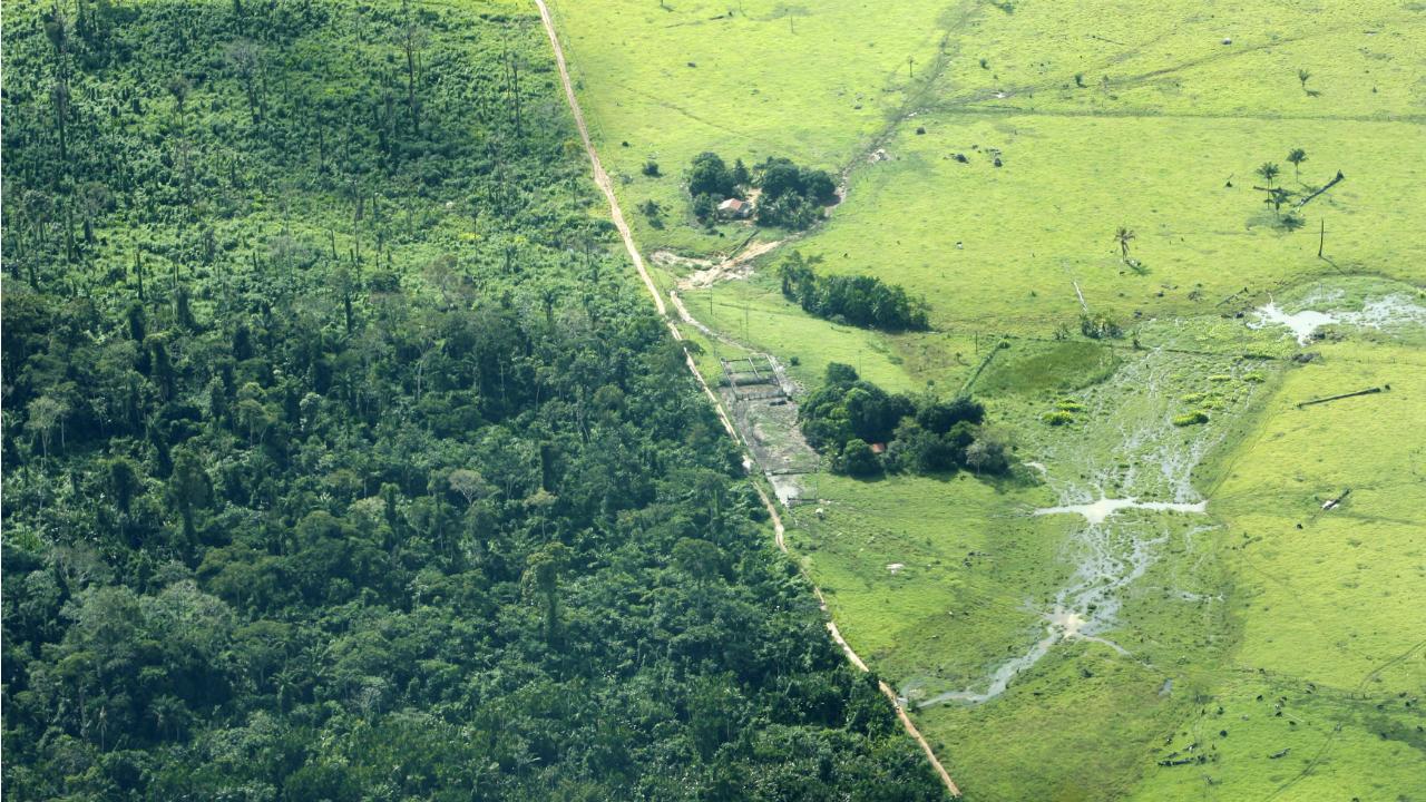Maraba (Amazónia - Brasil)