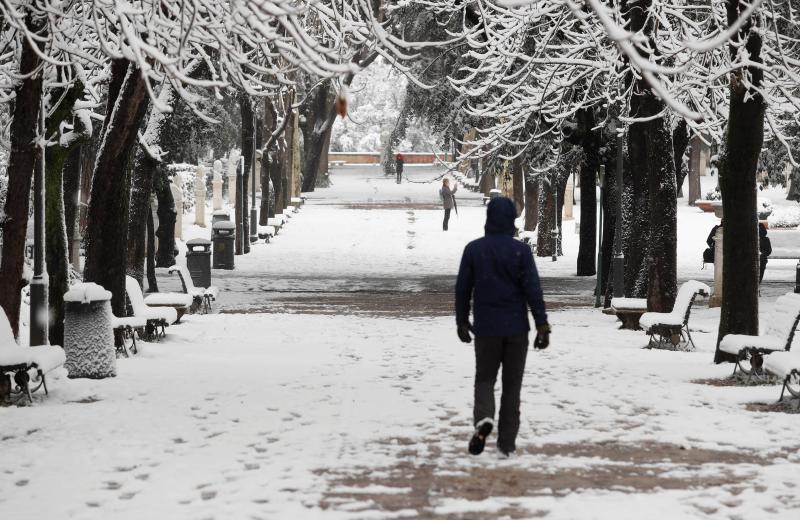 Roma acorda coberta de neve