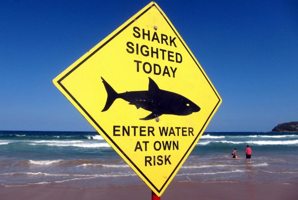 Aviso de tubarões na costa - Austrália