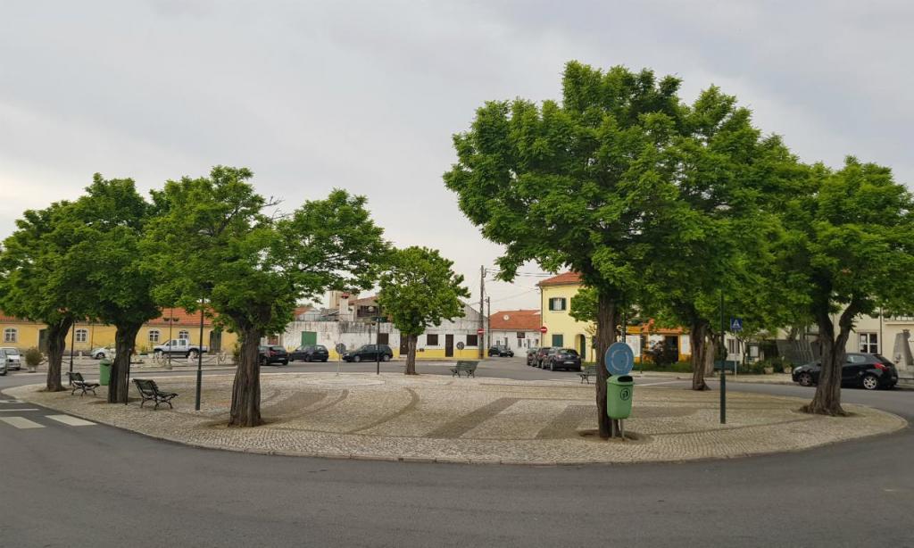 Reportagem Sérgio Conceição