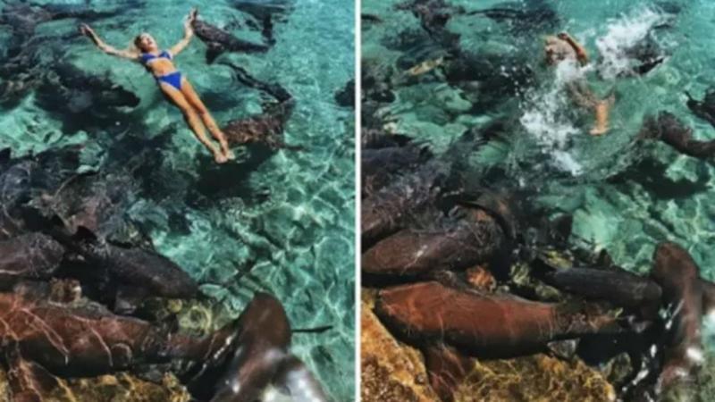 Modelo do Instagram atacada por tubarão