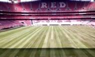 Estádio da Luz (fonte: Red)