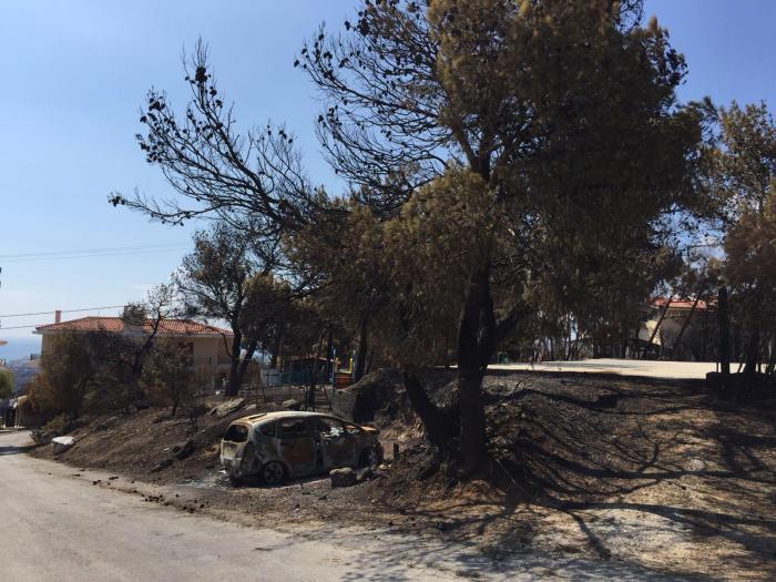 Assim ficou a localidade de Neo Voutzas depois das chamas