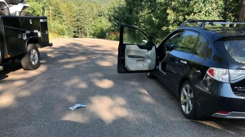 Urso dentro de um carro (reprodução Facebook Jefferson County Sheriff's Office)