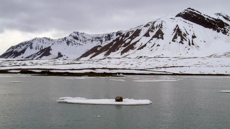 Longyearbyen - Noruega - arquipélago Svalbard