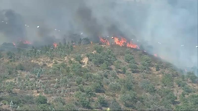 Incêndio de Loulé alastrou ao Baixo Alentejo