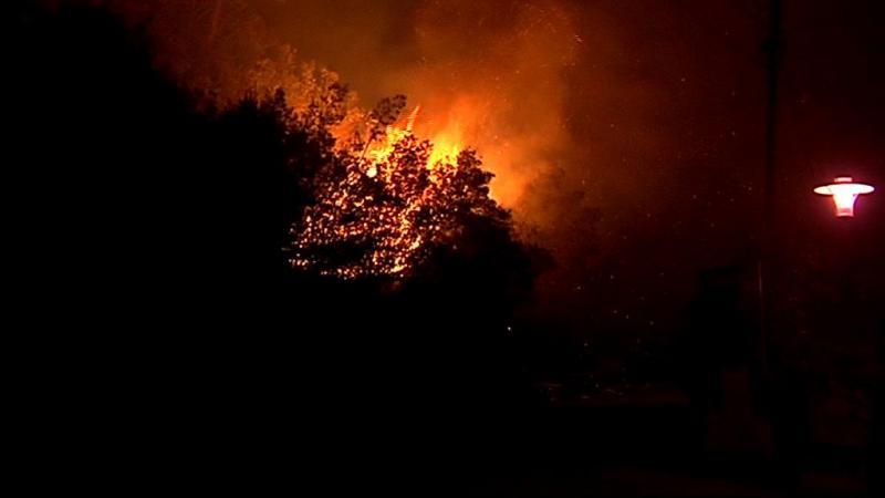 Monchique: bombeiro sofre ferimentos ligeiros durante combate às chamas