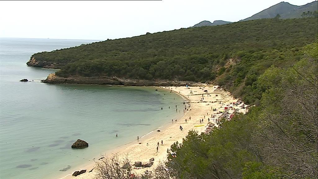 Clube da Arrábida teme que várias praias desapareçam por causa das obras