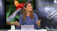Imagem da semana: Guardiola, Dani Alves e sexo: ora veja