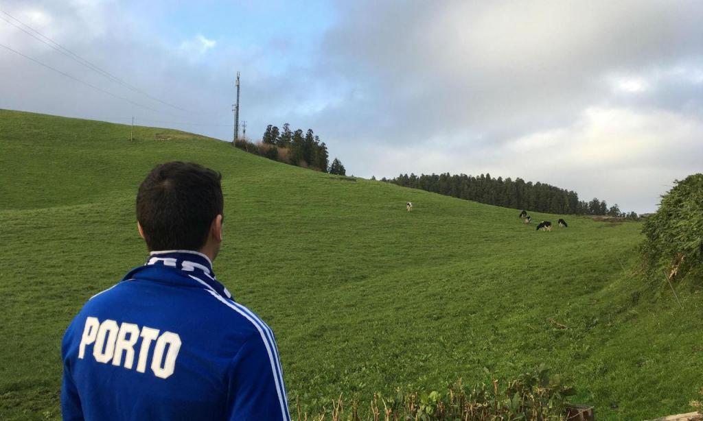 Entre as vacas e o Santa Clara-FC Porto