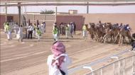 Jogadores do PSG vibram com corrida de camelos