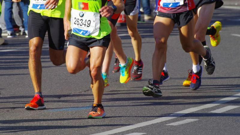 Atleta salva cão em plena maratona