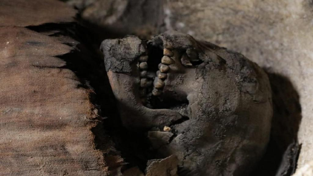 Descobertas mais de 40 múmias no Egito