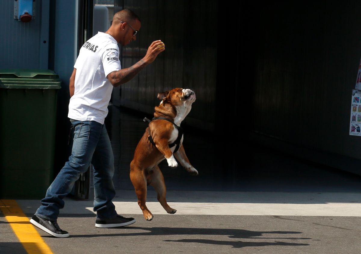 Lewis Hamilton e Roscoe (Reuters)