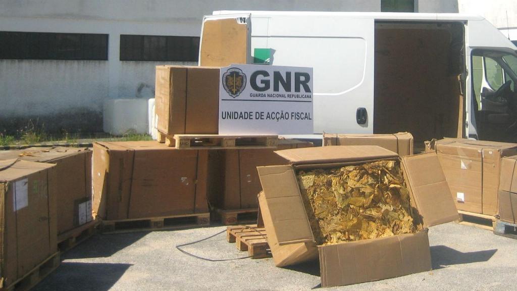 Apreensão de 1 280 quilos de folha de tabaco