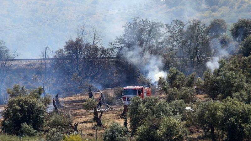 Resultado de imagem para Governo prolonga proibição de queimadas até quinta-feira em 10 distritos