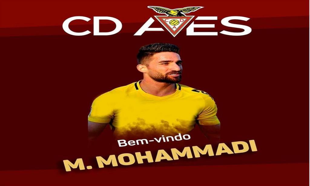 Mehrdad Mohammadi (Desp. Aves)