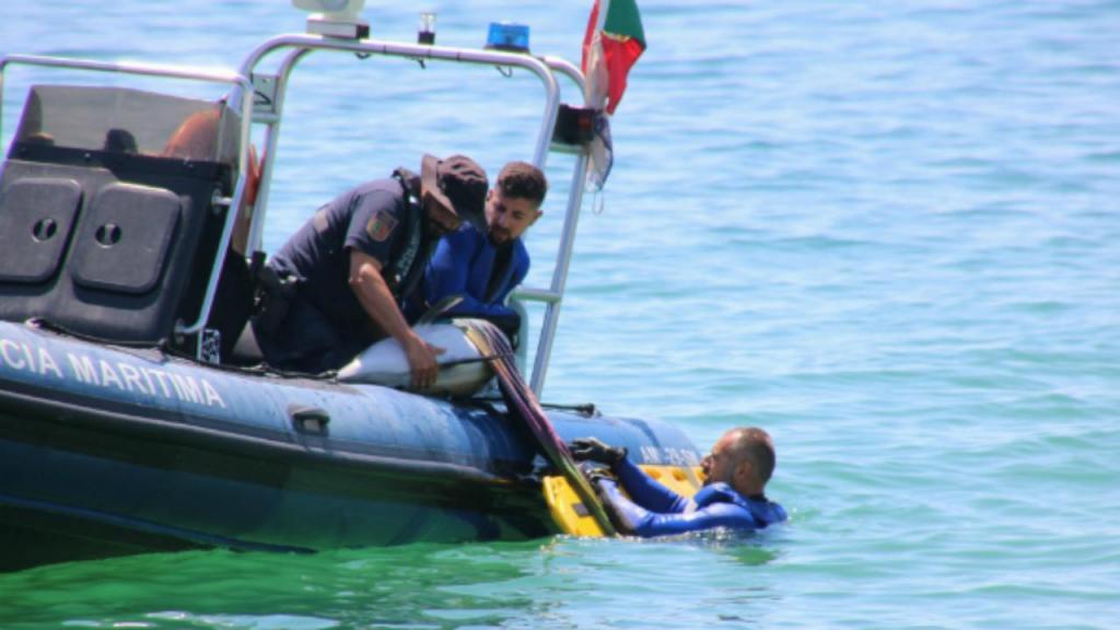 Polícia Marítima auxilia golfinho