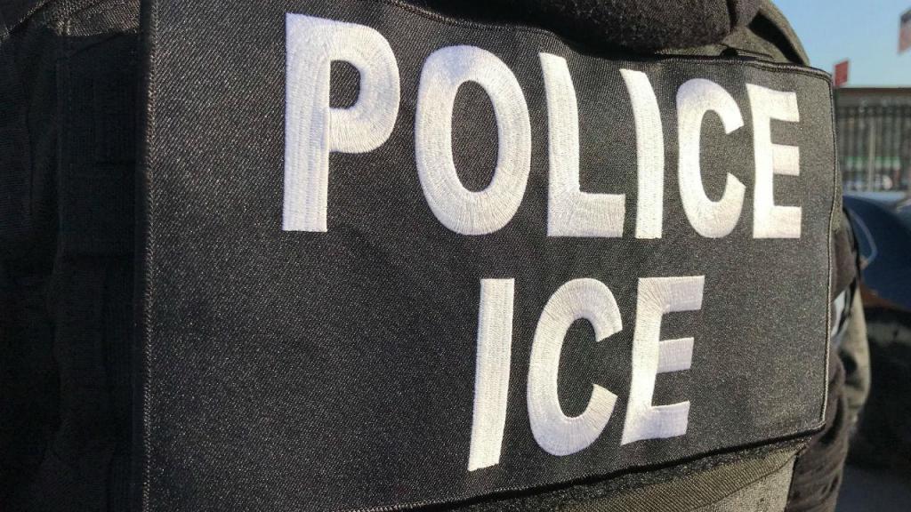 Serviços de imigração norte-americanos