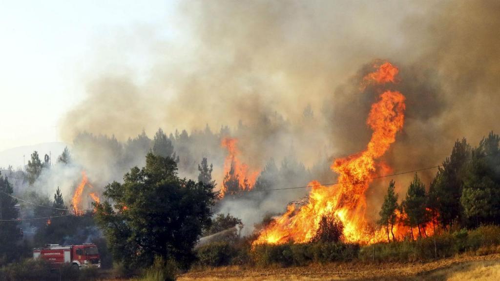 Incêndio em Sobral do Campo, Castelo Branco