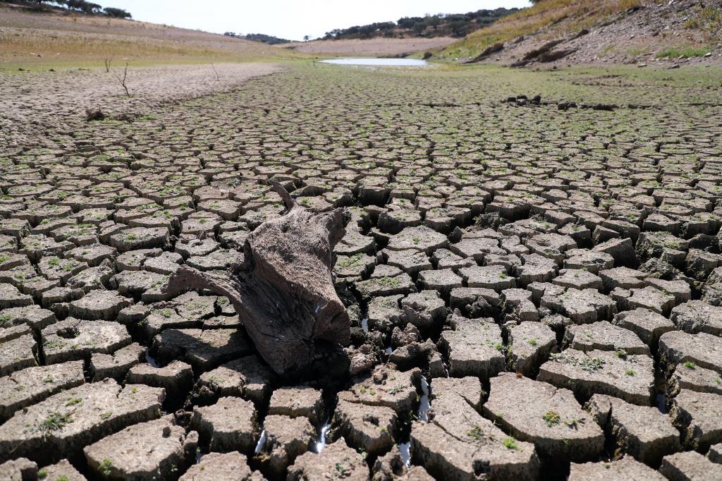 Seca extrema afeta o interior sul do país