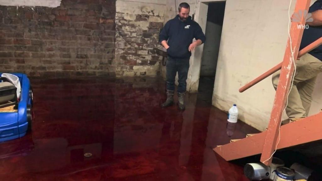 Um homem encontrou, na cave de casa, restos de animais e sangue a uma altura de 13 centímetros