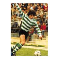Aos 17 anos Paulo Futre estreava-se na equipa principal do Sporting
