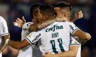 Tigre-Palmeiras