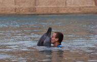 O tenista checo Tomas Berdych beija um golfinho