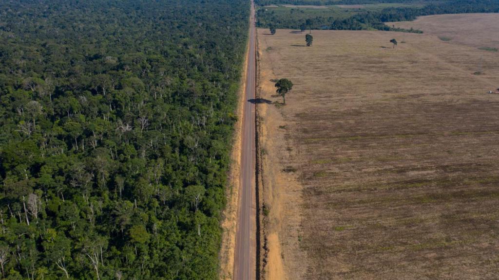 Desflorestação na Amazónia