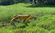 Singapura usa robô para patrulhar parques (EFE)