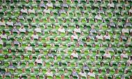 Ferencvaros encheu estádio com adeptos de cartão frente ao Debrecen, no regresso da I Liga da Hungria, este sábado, 23 de maio (Tibor Illyes/EPA)