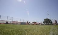 Treino do Benfica (site Sport Lisboa e Benfica)