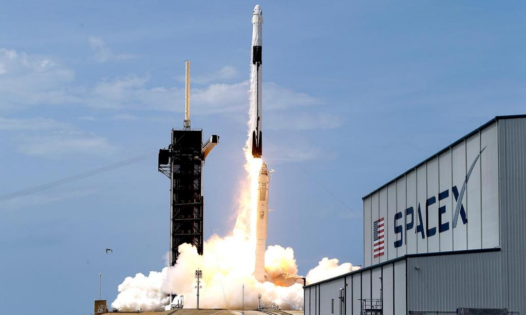 SpaceX (AP/John Raoux)