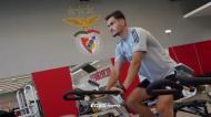 Benfica em testes físicos na véspera do regresso aos treinos