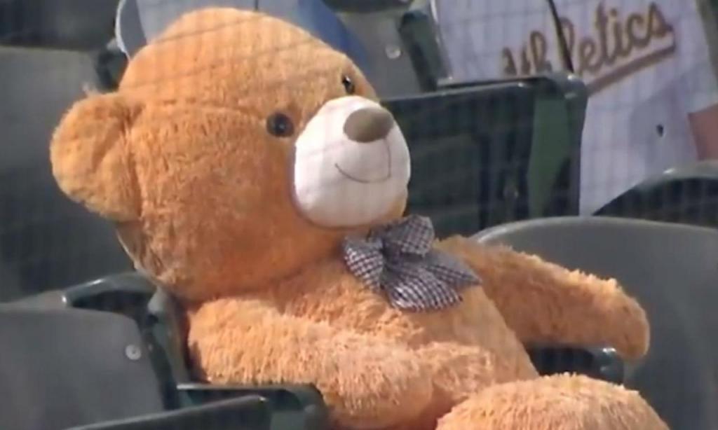 Urso de peluche atingido por bola