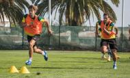 Leões aceleram preparação para a estreia europeia