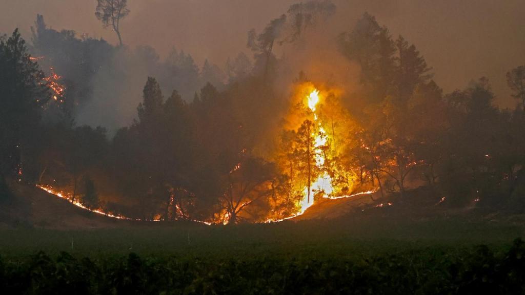 Incêndio em região vinícula na Califórnia