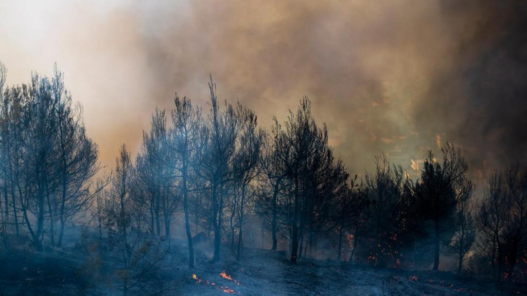 Vaga de incêndios em Israel e na Cisjordânia