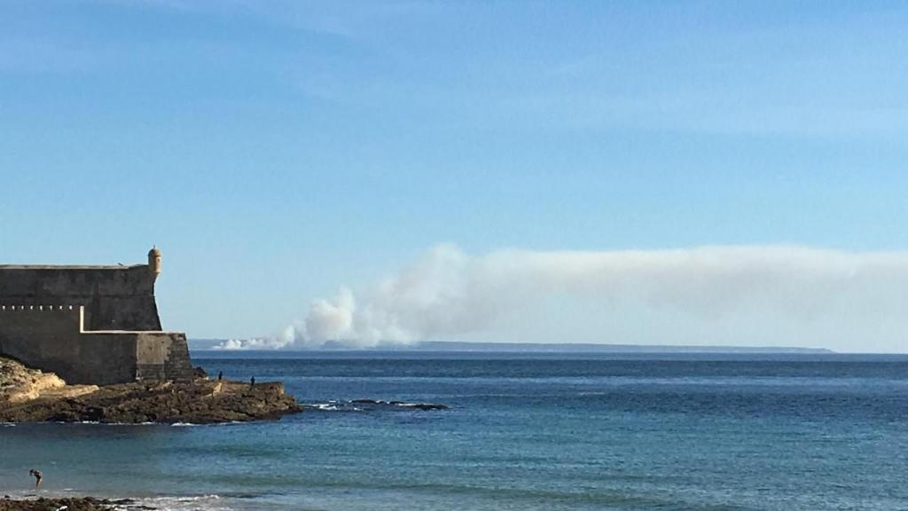 Incêndio na lagoa de Albufeira, em Sesimbra