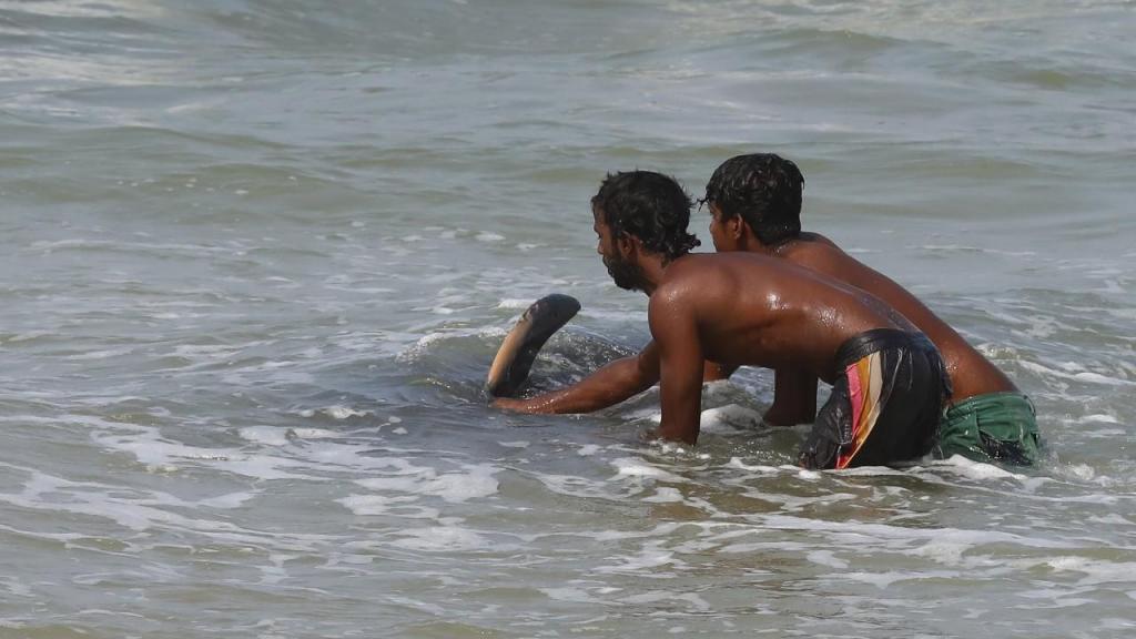 Baleias resgatadas no Sri Lanka