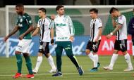 Palmeiras (Sebastiao Moreira/Pool via AP)
