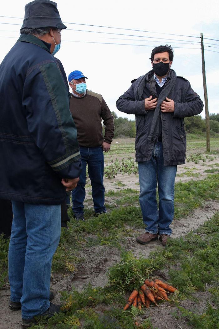 João Ferreira visita exploração agrícola na Gafanha da Boa Hora