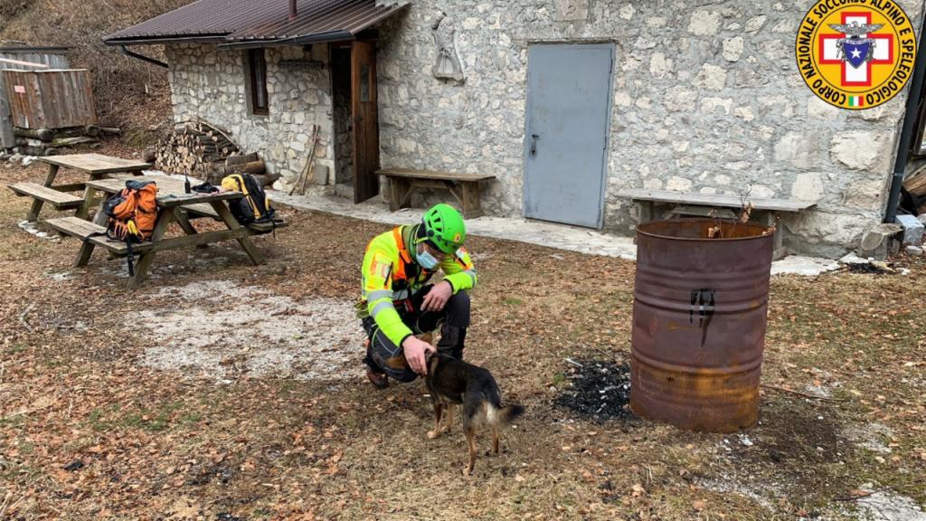 Cão ajuda dono a sobreviver sete dias gelados nos Alpes italianos após queda grave