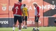 Benfica: grupo completo com o regresso dos internacionais