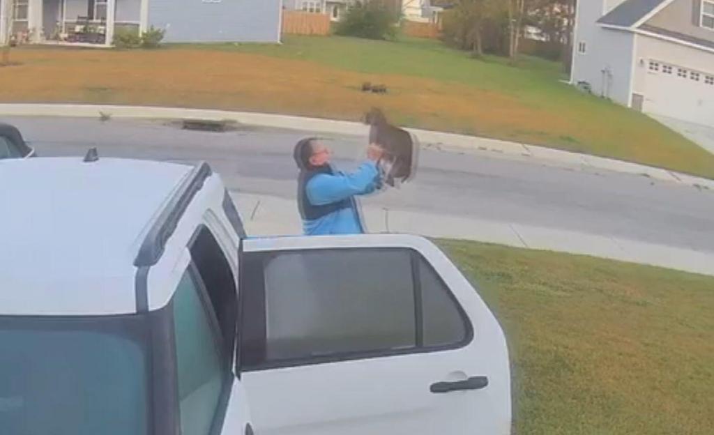 Momento em que lince ataca casal à porta de casa