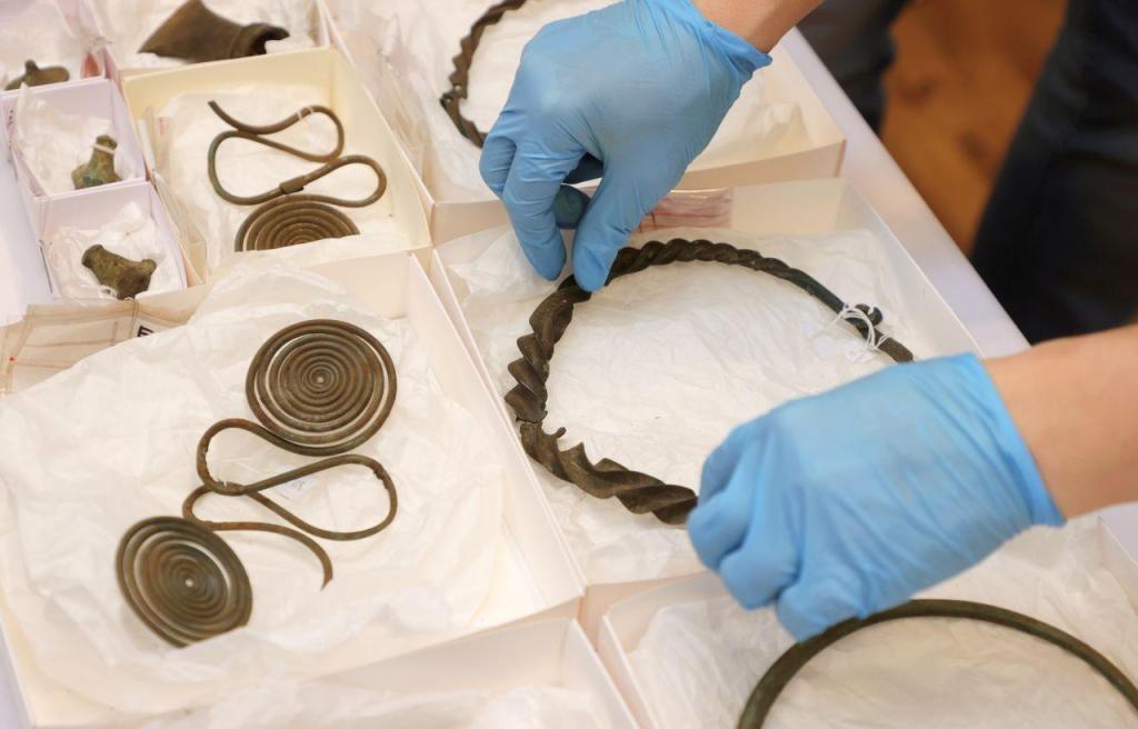 Vestígio da Idade do Bronze encontrados por acaso numa floresta sueca
